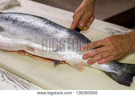 Kitchen knife cuts raw fish. Man's hand on raw fish. Kitchen table in sushi bar. Salmon meat required for recipe.