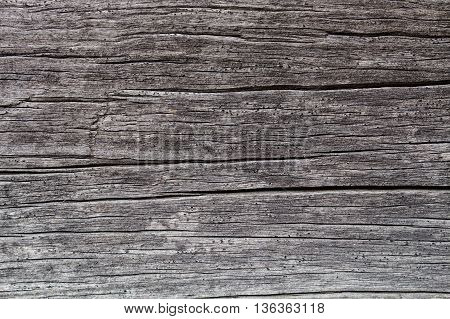 The Wood background Wood surface Wood texture