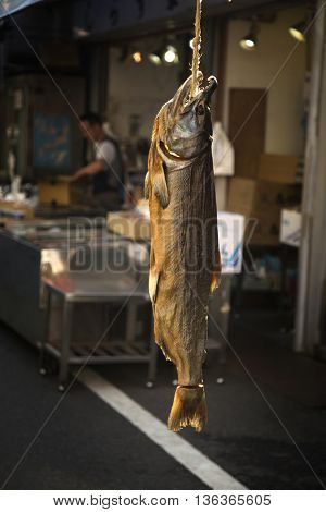 Salmon fish tied by a rope to dry in a fish market in Japan