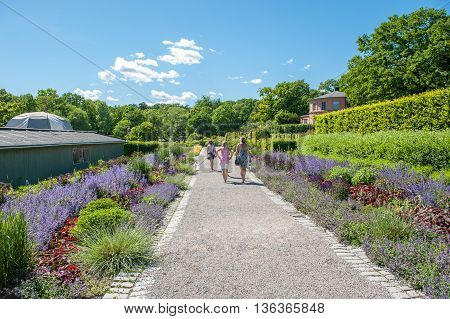 STOCKHOLM - JUNE 24: Rosendals garden  in Stockholm. .  Rosendal is a historic public garden known as one of the best places for having a coffee in Stockholm.