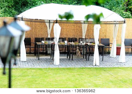 Table setup for wedding reception and cat in big tent outdoor on bamboo wall background