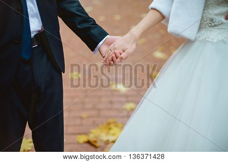 Close-up of newly weds holding each other's hands and showing their wedding rings