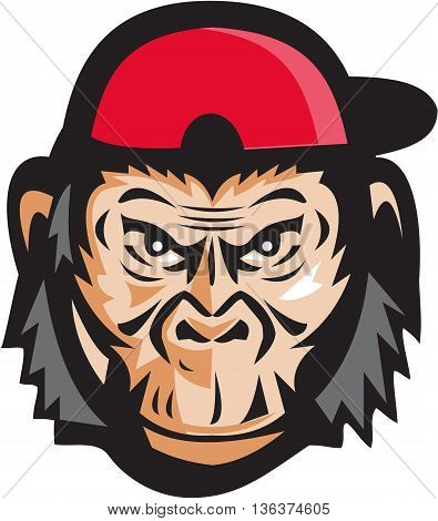 Illustration of head of an angry chimpanzee baseball player wearing baseball cap viewed from front set on isolated white background done in retro style.