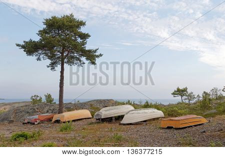 Boats laying upside down a single pine tree and the sea in the background. No people