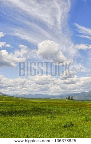 Open grasslands and big skies in Montana.