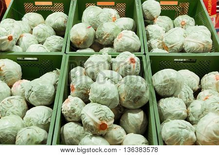 Boxes of fresh cabbages in a supermarket. Healthy eating