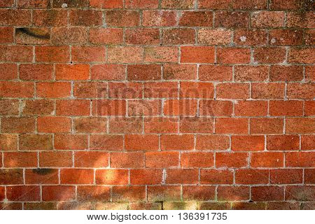 Broad wall red brick in Tuscan terracotta.