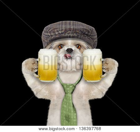 Dog drinks beer and greeting somebody -- isolated on black