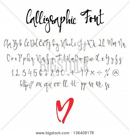 Calligraphic font with numbers, ampersand and symbols. Modern Alphabet font. Letters alphabet, Calligraphy alphabet, handmade font.