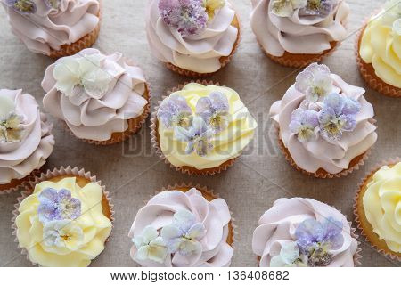 Purple And Yellow Cupcakes With Sugared Edible Flowers.