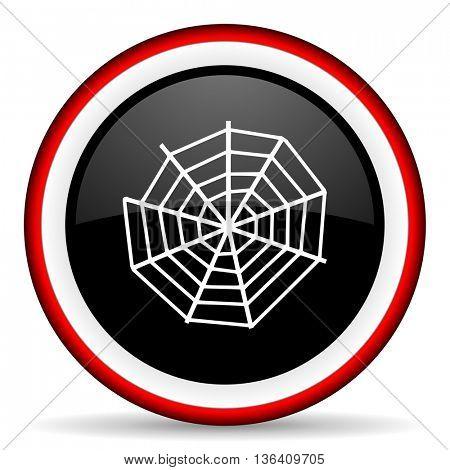 spider web round glossy icon, modern design web element