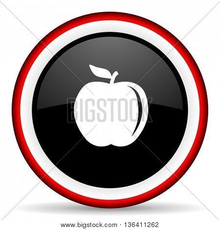 apple round glossy icon, modern design web element