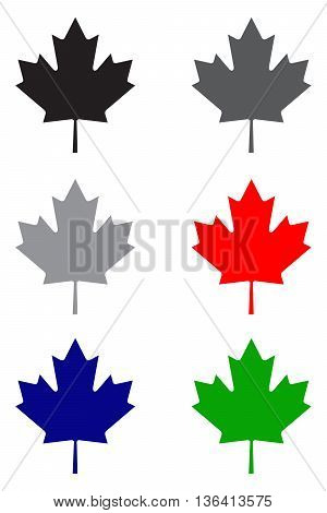 Maple leaf icon culture day tree maple tree country - geographic area