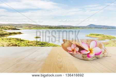 Pink Flower Plumeria Or Frangipani In Sea Conch Shell On Wooden Table Top At Lake