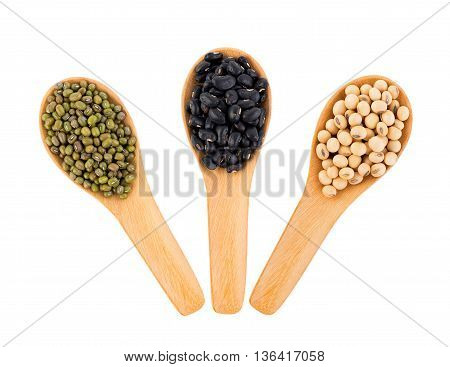 black bean in the spoon on white background.Pile of mung beans in the spoon on white background.soy beans in the spoon on white background