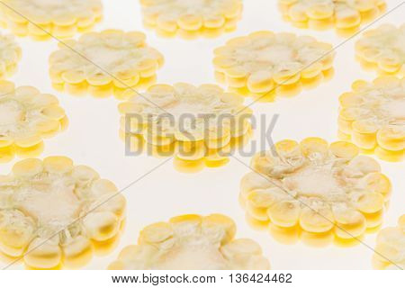Slices of corn cobs on a white background. Pattern. Food background.