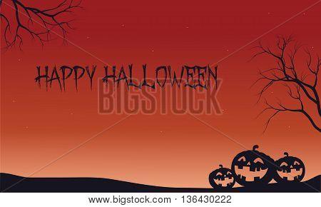 Halloween backgrouds pumpkins in fields vector illustration