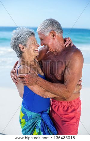 Cute mature couple hugging on the beach on a sunny day