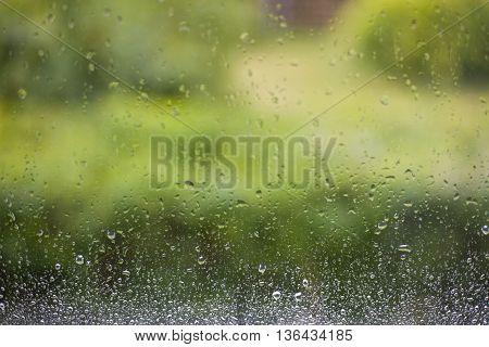 Window after a summer rain with a green garden background