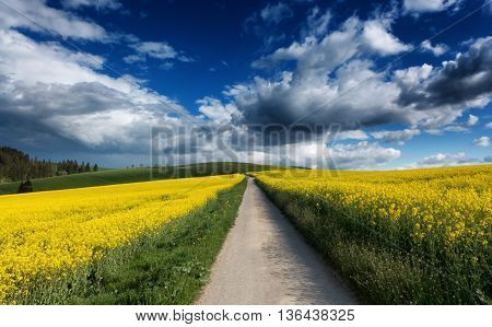 Clouds on sky and road in rapeseed field, Slovakia