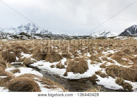 Winter landscape on Lofoten Islands North Norway