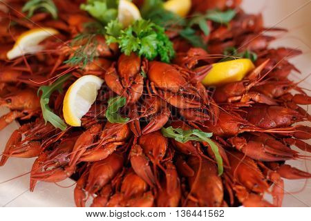 Red boiled crawfish with lemon close up