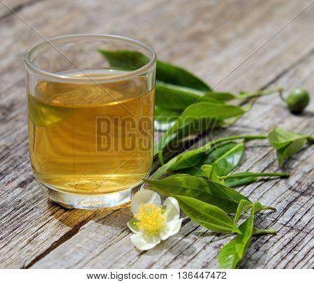 Green Tea Cup, Tea Leaf