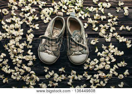 Children gumshoes in white acacia blossoming flower petals decorative frame on dark wooden background