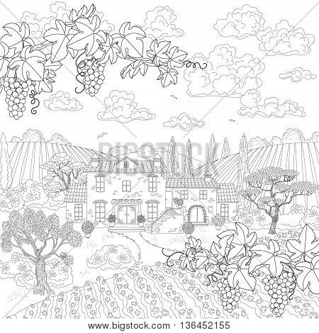 Contoured summer landscape with house vineyard trees grape branches. Hand drawn cartoon monochrome illustration. Black and white elements for coloring.