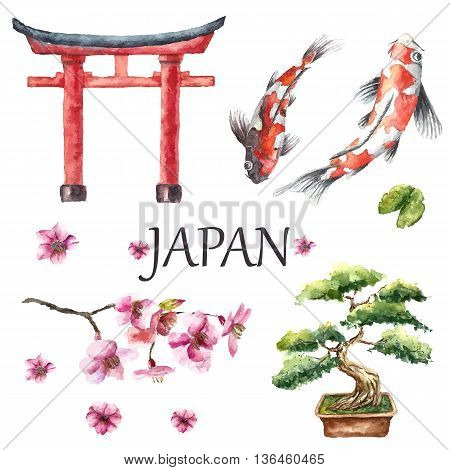 Watercolor Hand draw Japanese design elements Torii gate, bonsai tree, koi fish and cherry blossom branch. Vector illustration.