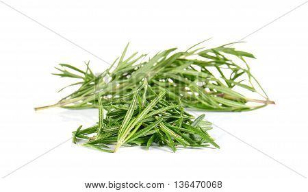 Rosemary isolated on a white background.Focus front.