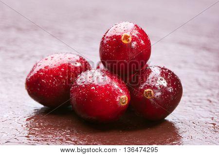 Wet Fresh Wild Cranberries. Studio Shoot.