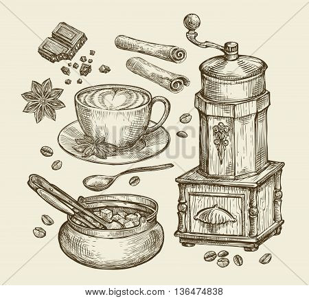 Hand-drawn vintage coffee grinder, cup, beans, star anise, cinnamon, chocolate, drink, sugar bowl Sketch vector illustration