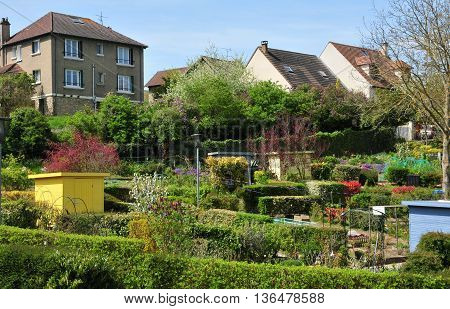 Verneuil sur Seine France - mai 2 2016 : the allotment garden in spring