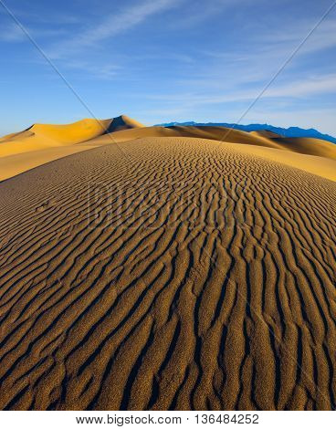 Early morning, sunrise. Magnificent sandy waves on dunes. Death Valley, California