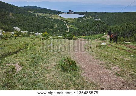 Panoramic view around Popovo lake, Pirin Mountain, Bulgaria