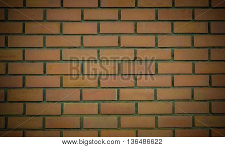 brick wall background texture. construction, masonry , solid