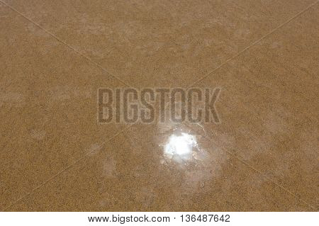 Wet Yellow Sand Background.