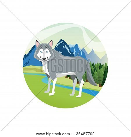 Animal concept represented by wolf cartoon over circle. landscape background. Colorfull Illustration