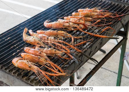 Grilled prawns on the grill. shrimp, grilled, grill
