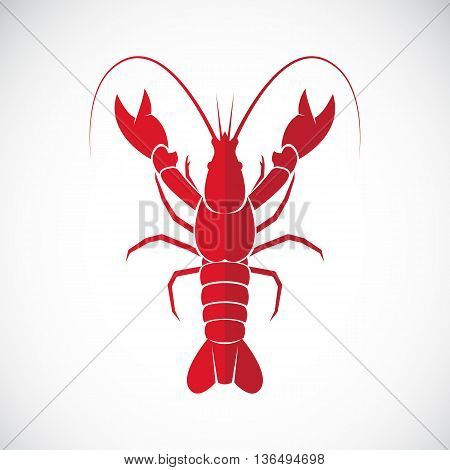 Vector image of an lobster design on white background. Lobster Icon. Vector lobster for your design.