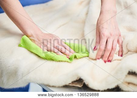 Hand wipe with a cloth for your fur