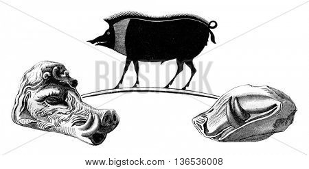 The Boar Erymanthian, vintage engraved illustration. Magasin Pittoresque 1861.