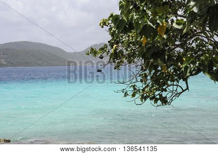The shoreline showing blue water on St. John island in the Caribbean.