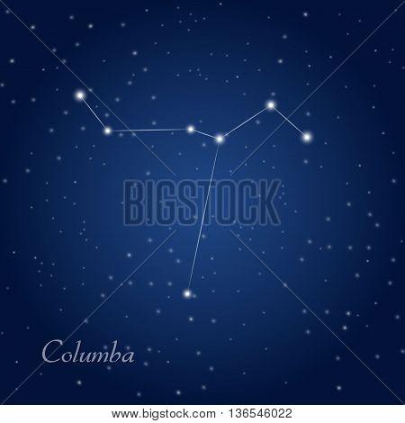 Columba, dove constellation at starry night sky