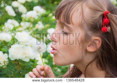 Portrait of a little girl blowing a dandelion