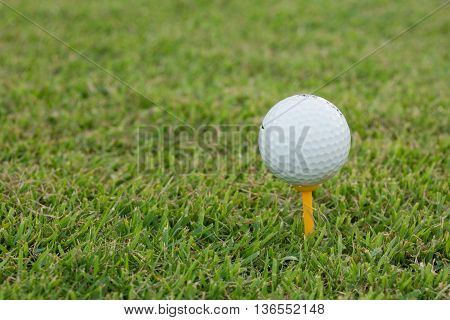Golf Ball And Golf Club On Grass
