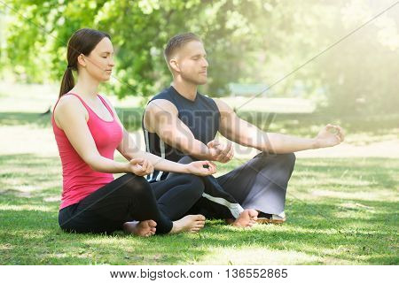 Young Couple Doing Yoga In Park At Morning