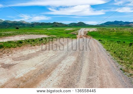 Dirt road & lush grassland of north Mongolian steppe