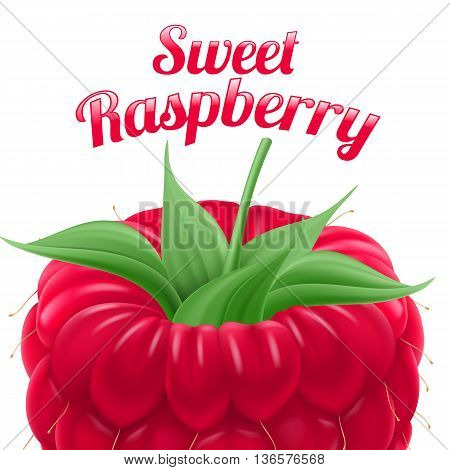 Poster Sweet Raspberry. Fruit and Dessert. Space for Text